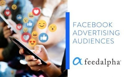Facebook Advertising Audiences