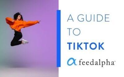 A Guide to TikTok