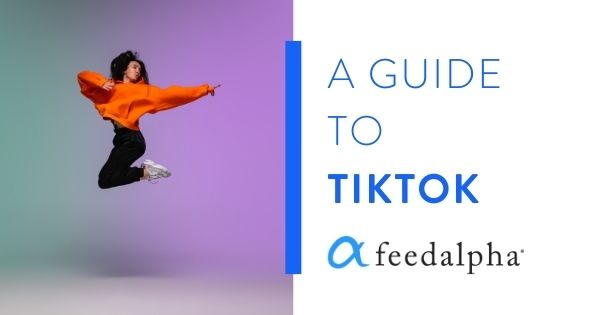 A Guide to TikTok